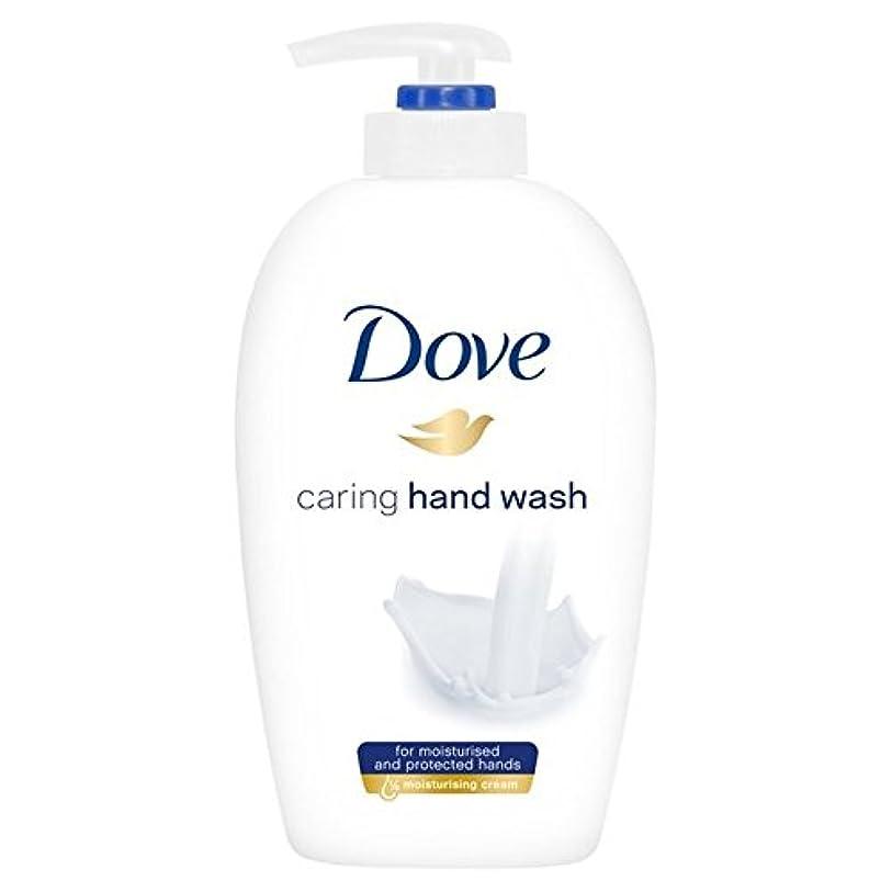 猫背上に築きます溶かす鳩思いやり手洗い250ミリリットル x2 - Dove Caring Hand Wash 250ml (Pack of 2) [並行輸入品]