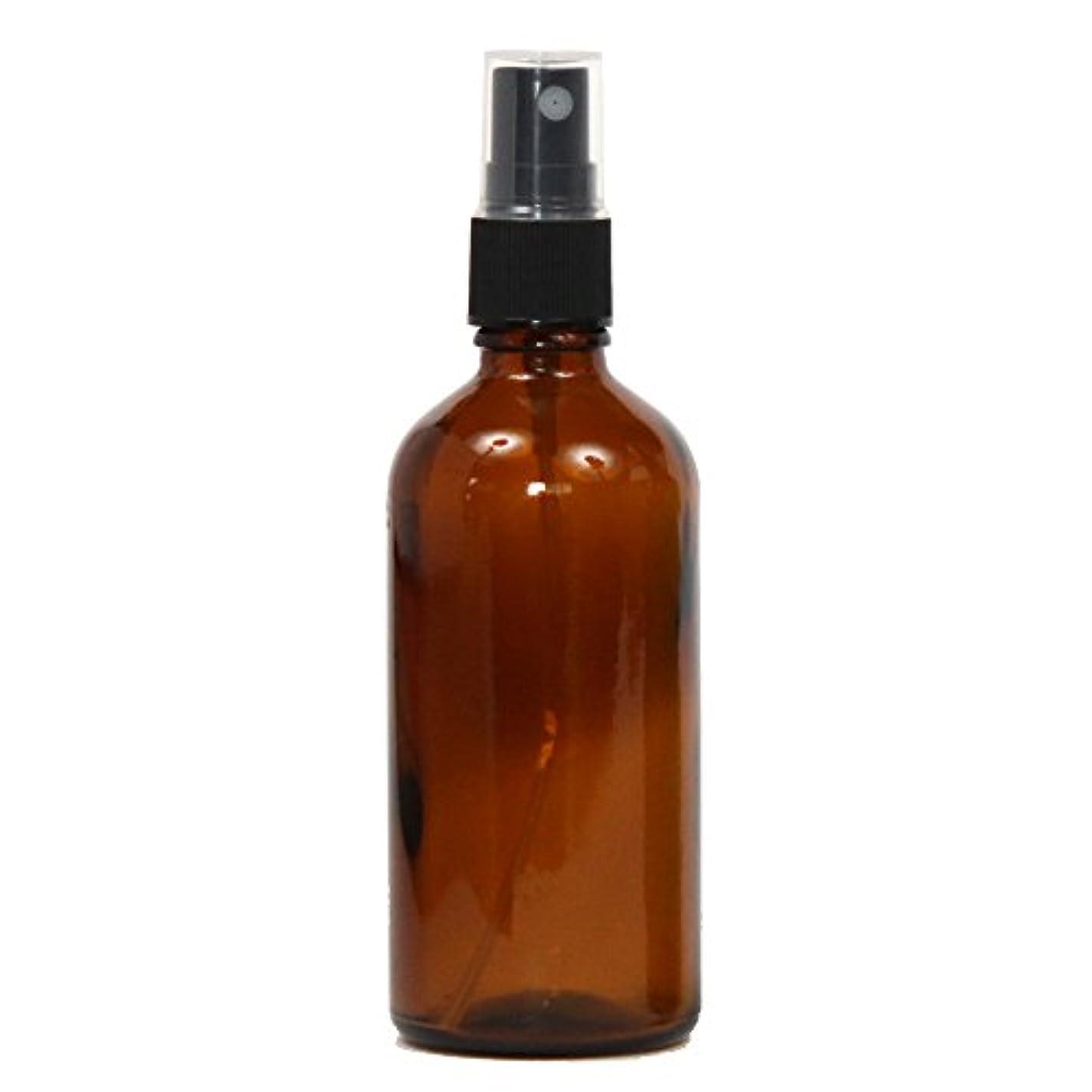 滞在キャプチャー匿名スプレーボトル ガラス瓶 100mL 遮光性ブラウン(アンバー) おしゃれアトマイザー ミスト空容器