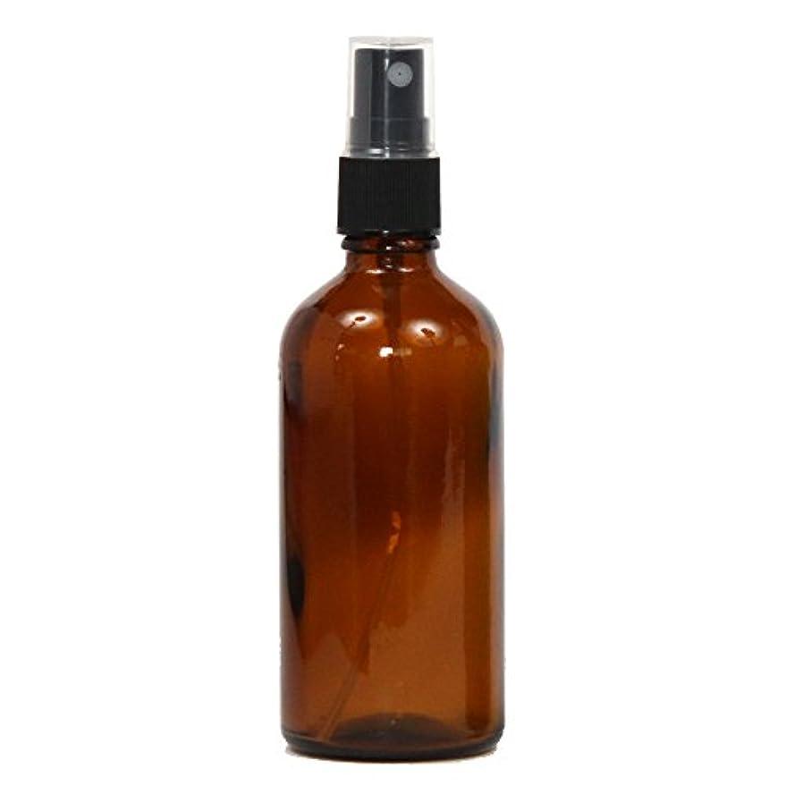 犯す合併症尾スプレーボトル ガラス瓶 100mL 【アンバー 茶色】 遮光性 ガラスアトマイザー 空容器br100g