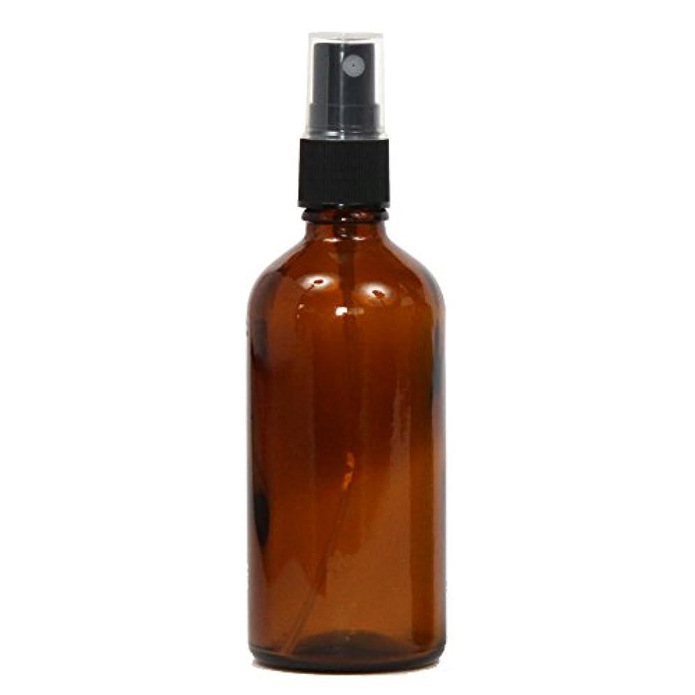 輸血苦情文句非難するスプレーボトル ガラス瓶 100mL 【アンバー 茶色】 遮光性 ガラスアトマイザー 空容器br100g