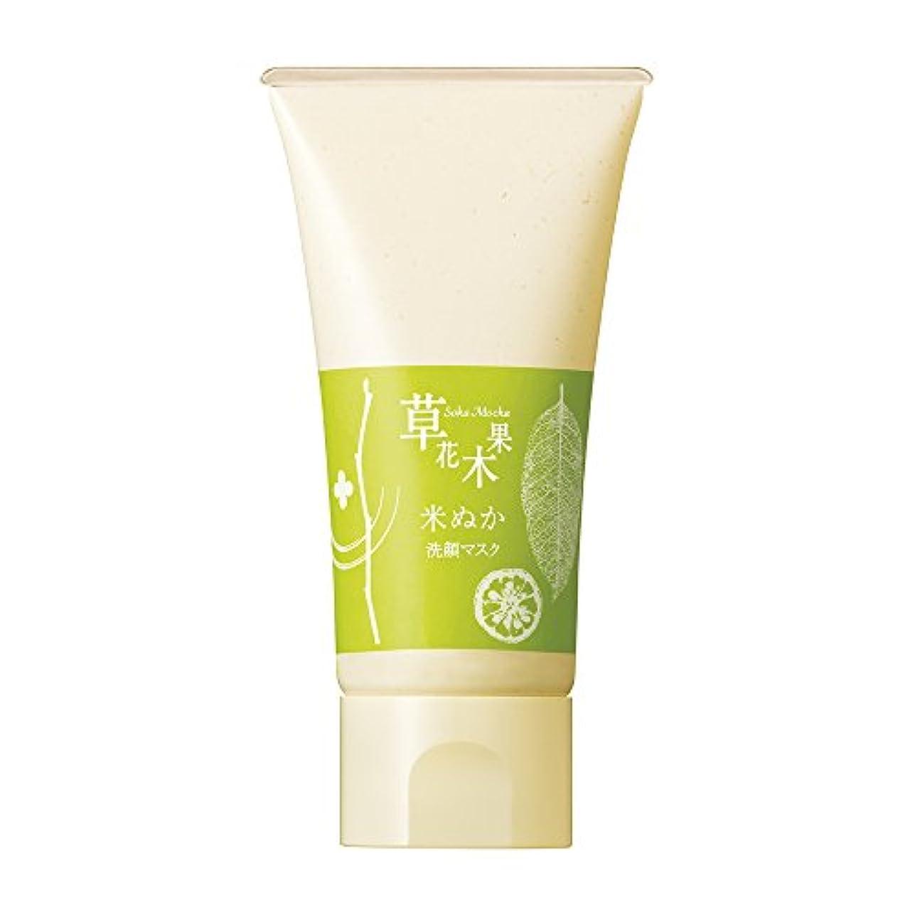 噴火媒染剤コンプリート草花木果(そうかもっか) 米ぬかの洗顔マスク 110g(約20回分)