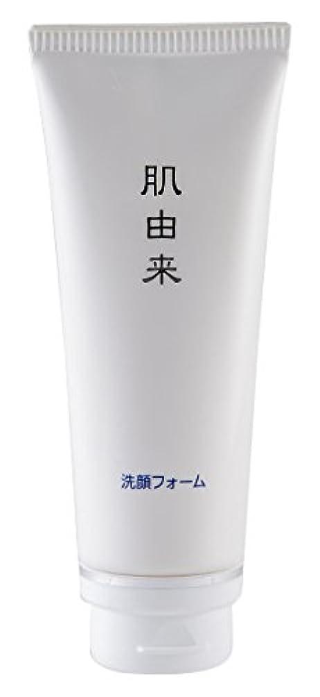 桁楽観的野心肌由来化粧品 洗顔フォーム 110g