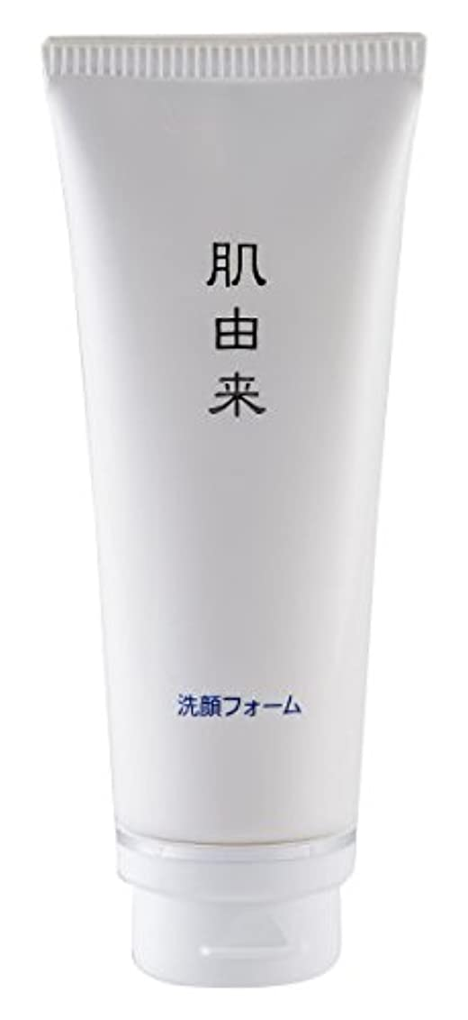 たくさん企業説明する肌由来化粧品 洗顔フォーム 110g