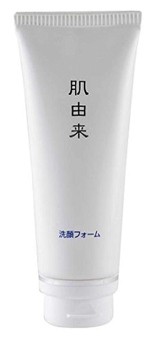 エンティティ画面修理可能肌由来化粧品 洗顔フォーム 110g