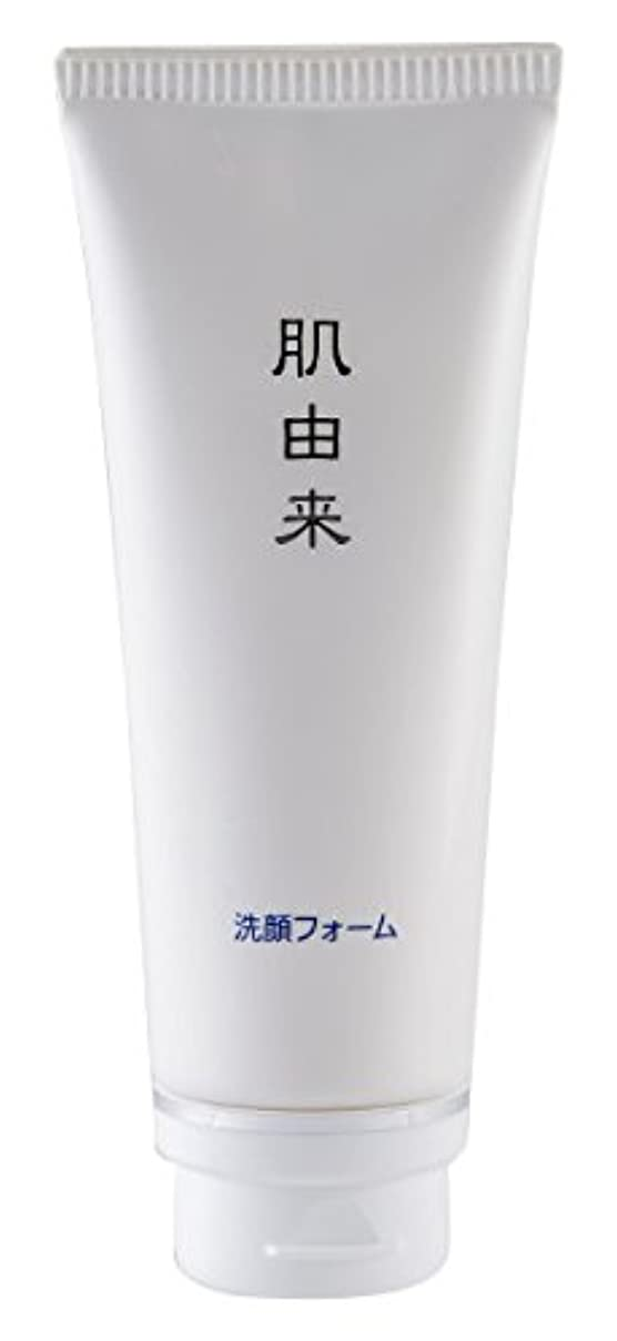 ブーストカップポルトガル語肌由来化粧品 洗顔フォーム 110g