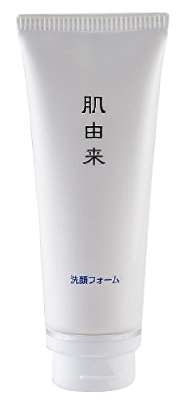 賞賛減る立場肌由来化粧品 洗顔フォーム 110g