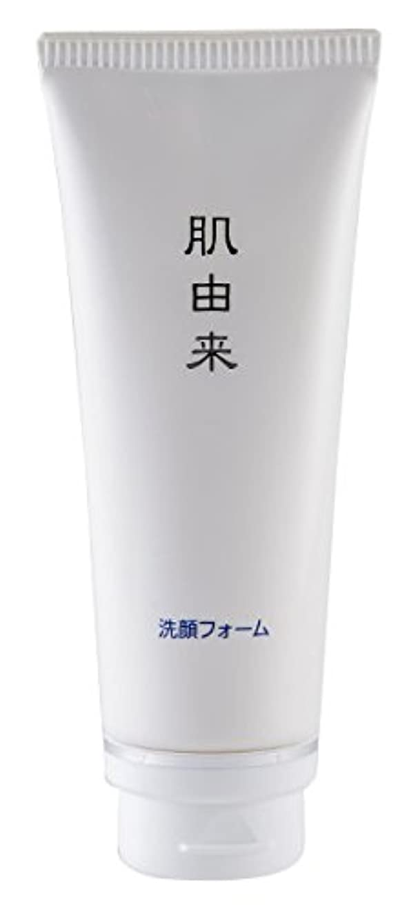 ホバート出会い隠肌由来化粧品 洗顔フォーム 110g