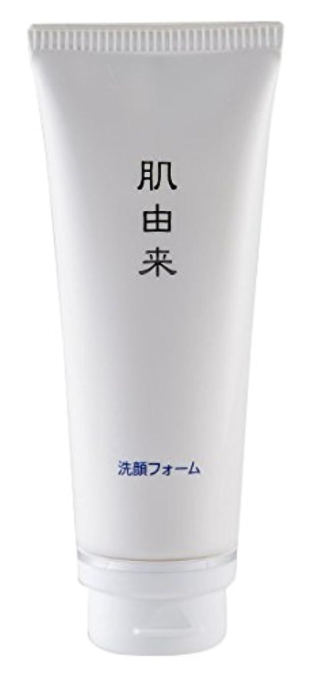 お誕生日食い違いドナー肌由来化粧品 洗顔フォーム 110g