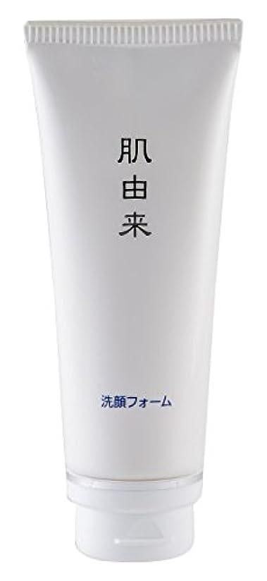 混沌ランドマーク蛾肌由来化粧品 洗顔フォーム 110g