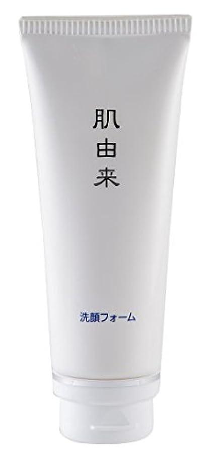 かなり森林チャンピオンシップ肌由来化粧品 洗顔フォーム 110g