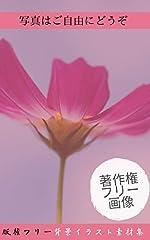 フリー画像集【花の素材集】【 花の写真集】商用利用可なので、ご自由にお使いください