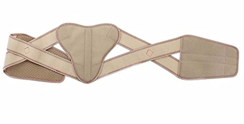 ペリスコープ交換可能ランドリーバイオメカサイドクロス(愛知式)骨盤ベルト