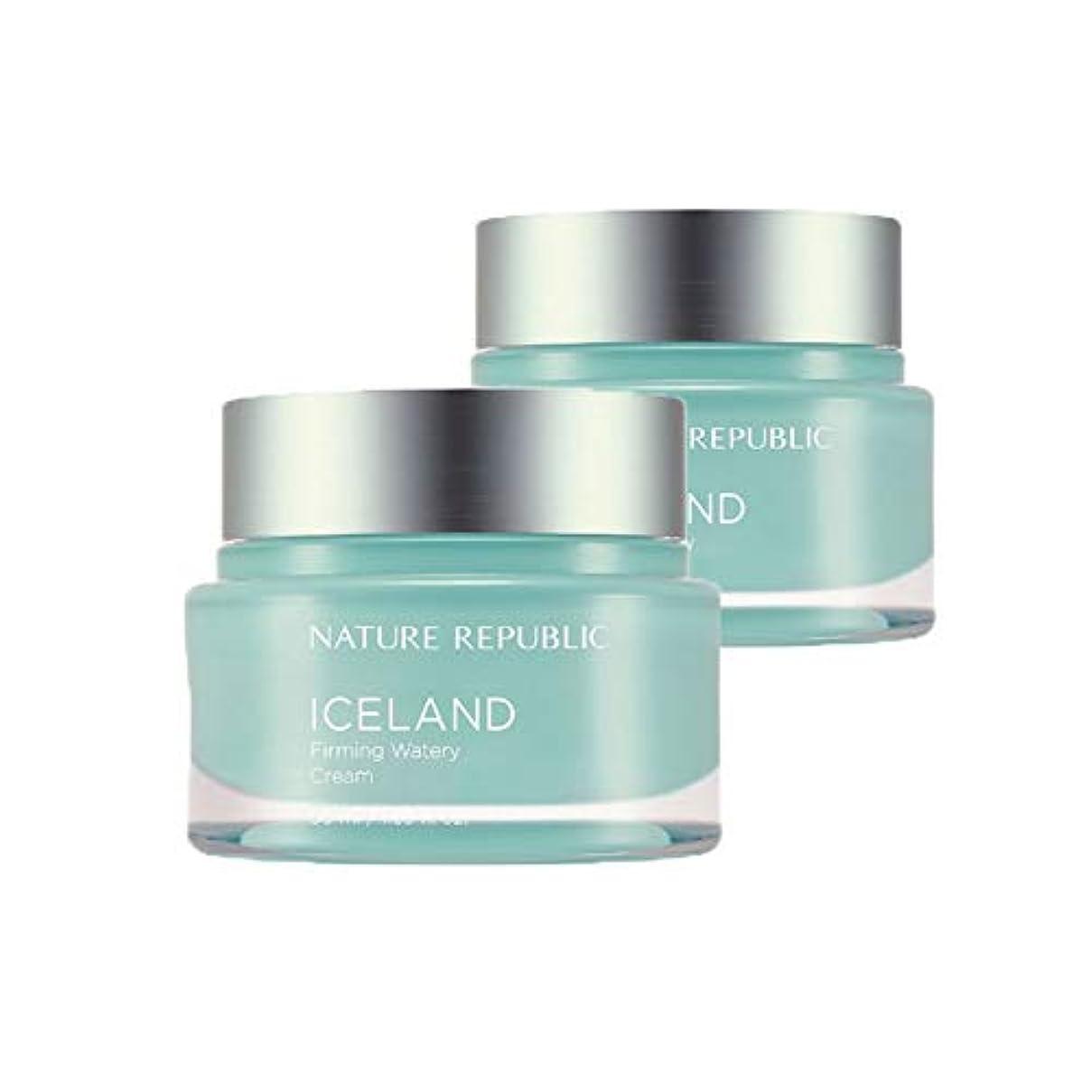 ネイチャーリパブリックアイスランドファーミング水分クリーム50mlx2本セット韓国コスメ、Nature Republic Iceland Firming Watery Cream 50ml x 2ea Set Korean...