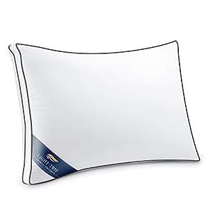 枕 安眠 人気 肩こり 快眠枕 安眠枕 高反発枕 安眠 高級 ホテル 丸洗い 洗える 防湿 通気 抗菌 ふんわり 柔らか 高度調節可能 熟睡 立体構造 43x63cm ホワイト