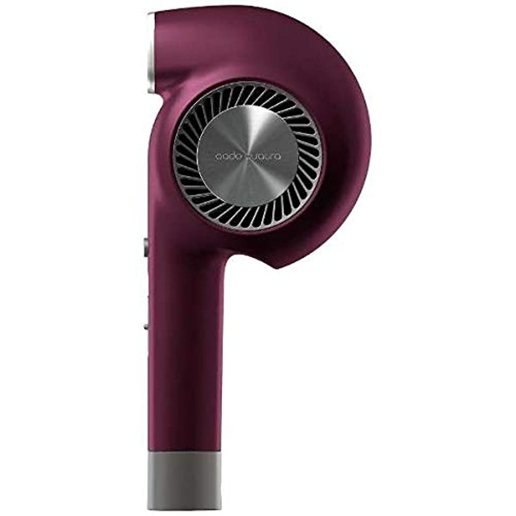レビューレコーダーチームカドークオーラ BD-E1-BG ヘアードライヤー Triple Treatment Hair Dryer バーガンディ [国内専用]