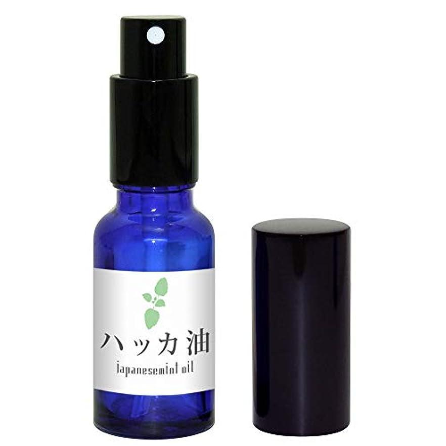 逆説クリップ液体ガレージゼロ ハッカ油 (スプレー瓶入20ml)