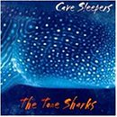 Cave Sleepers: Surf Shark / Over Hill & Date
