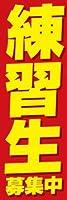 のぼり旗スタジオ のぼり旗 練習生募集中001 大サイズ H2700mm×W900mm