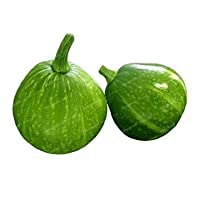 熱販売10PCSの/バッグレアミニカボチャ盆栽オーガニックフルーツ野菜盆栽マルチ種の植物のための家の庭:1