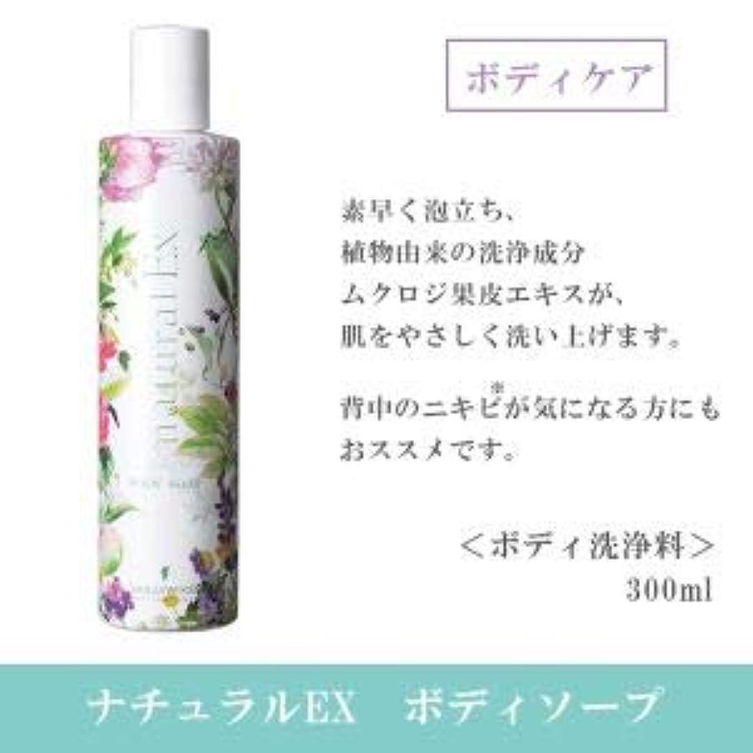 ペンフレンド木製グラフハリウッド化粧品 ナチュラルEX ボディソープ h 300ml