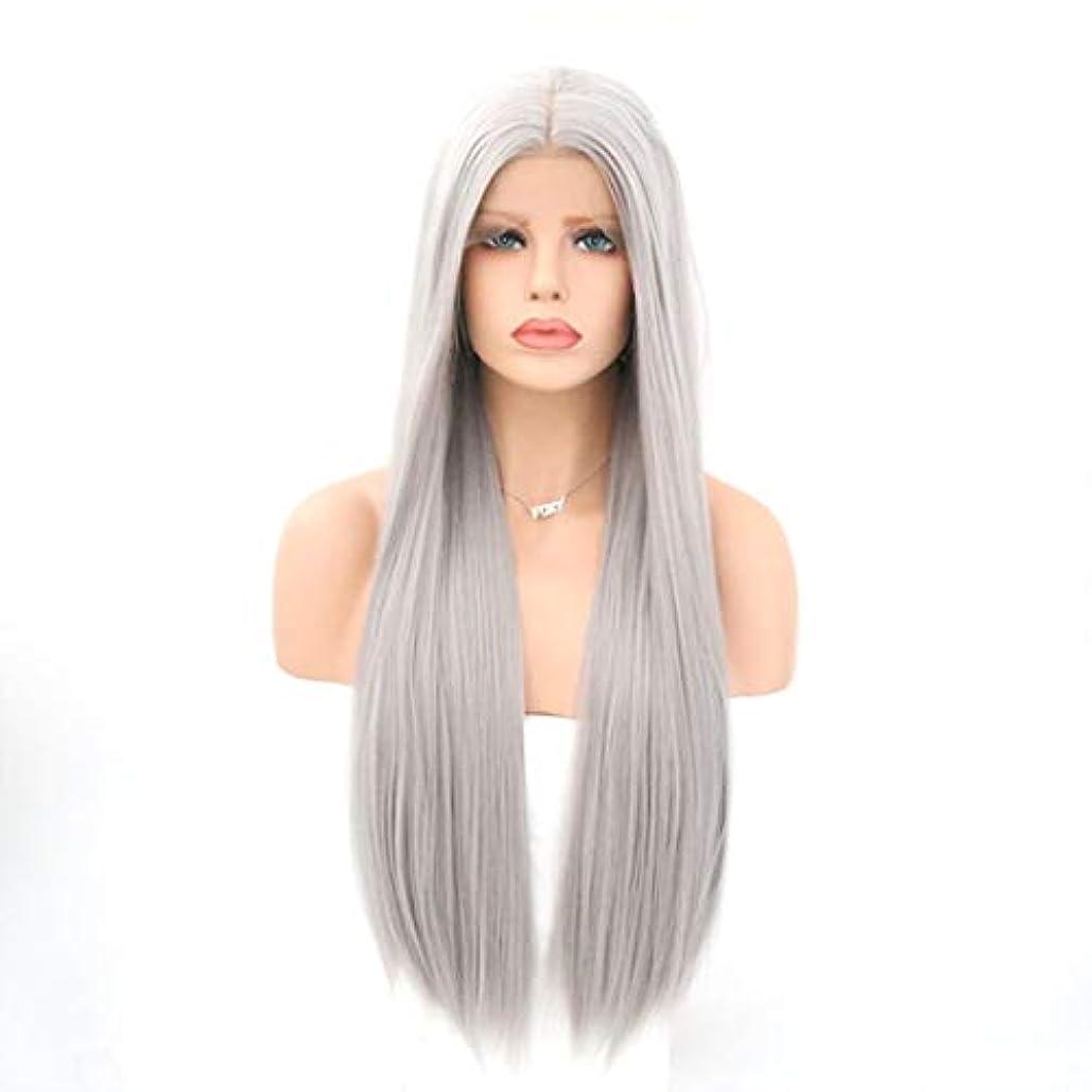 水銀のあなたのものロマンスSummerys 女性用フロントレース化学ファイバーウィッググレーカラーストレートヘアウィッグ