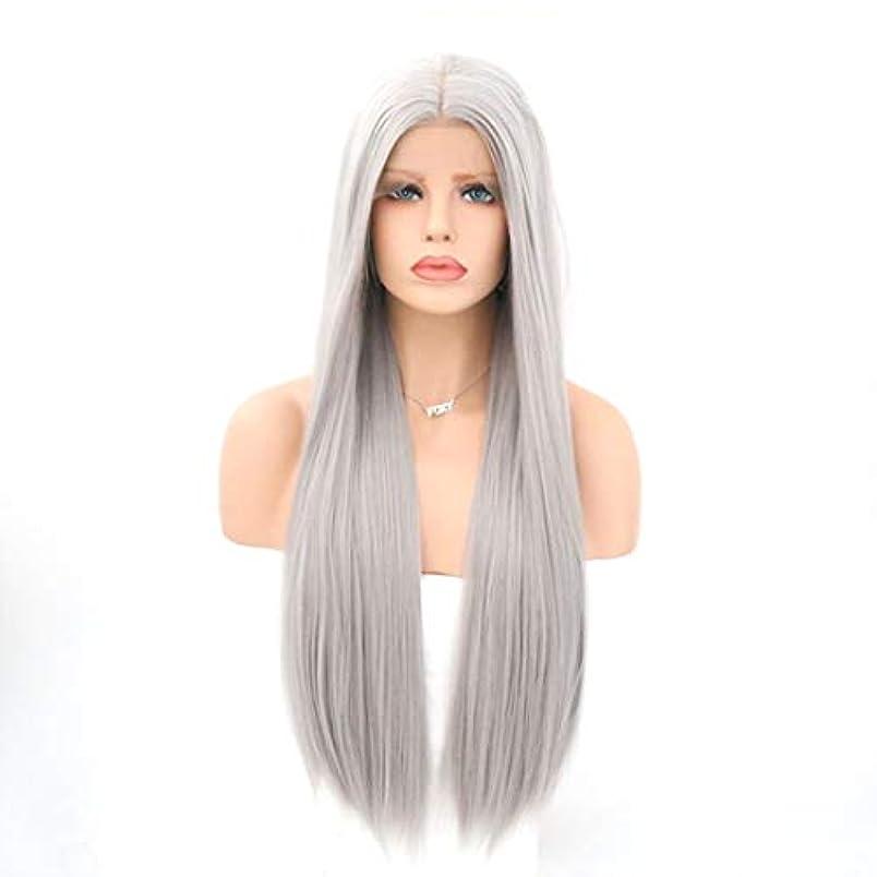 シーサイド見ました言及するSummerys 女性用フロントレース化学ファイバーウィッググレーカラーストレートヘアウィッグ