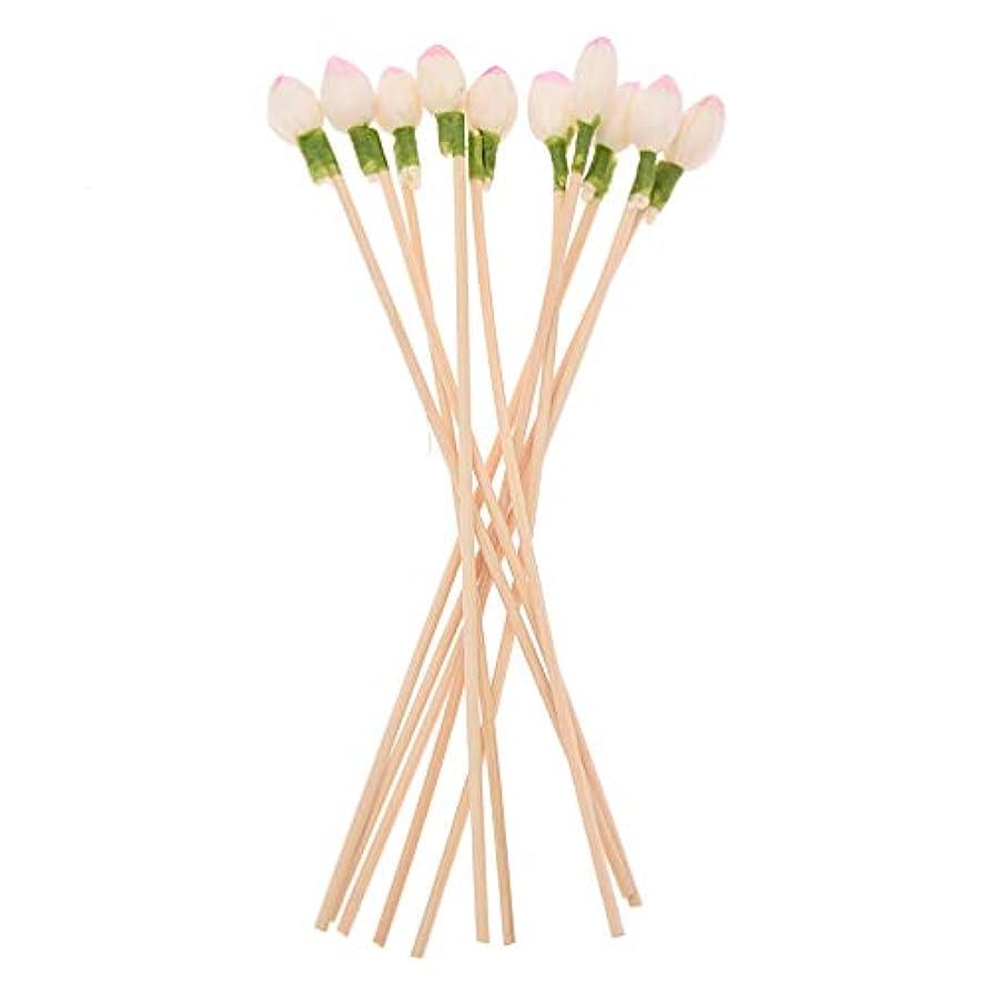 ティームナインへ対角線Viviseason (ビビシーズン)10本セット ラタンスティック 人工花芽 リードディフューザー用 リフィル 高品質 クラフト