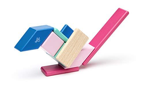 Tegu Magnetic Wooden Blocks 14pc - Blossom