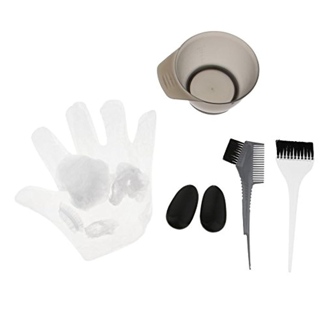 非常に置くためにパックどれでもヘアダイブラシ 毛染め用品セット ヘアカラーリング用品