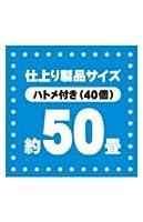 ブルーシート#3000 厚手 青 9.0x9.0M 1枚x2冊/ベール BS-309090