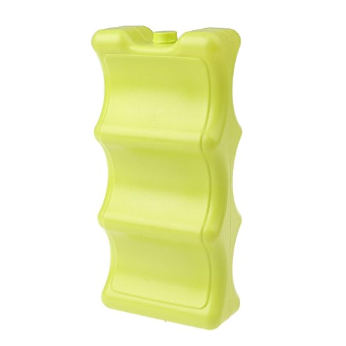 気分が良い牧草地チキンFityle プラスチック製 氷ブロックケース キャンプ ピクニック用 クーラーボックス 全2色