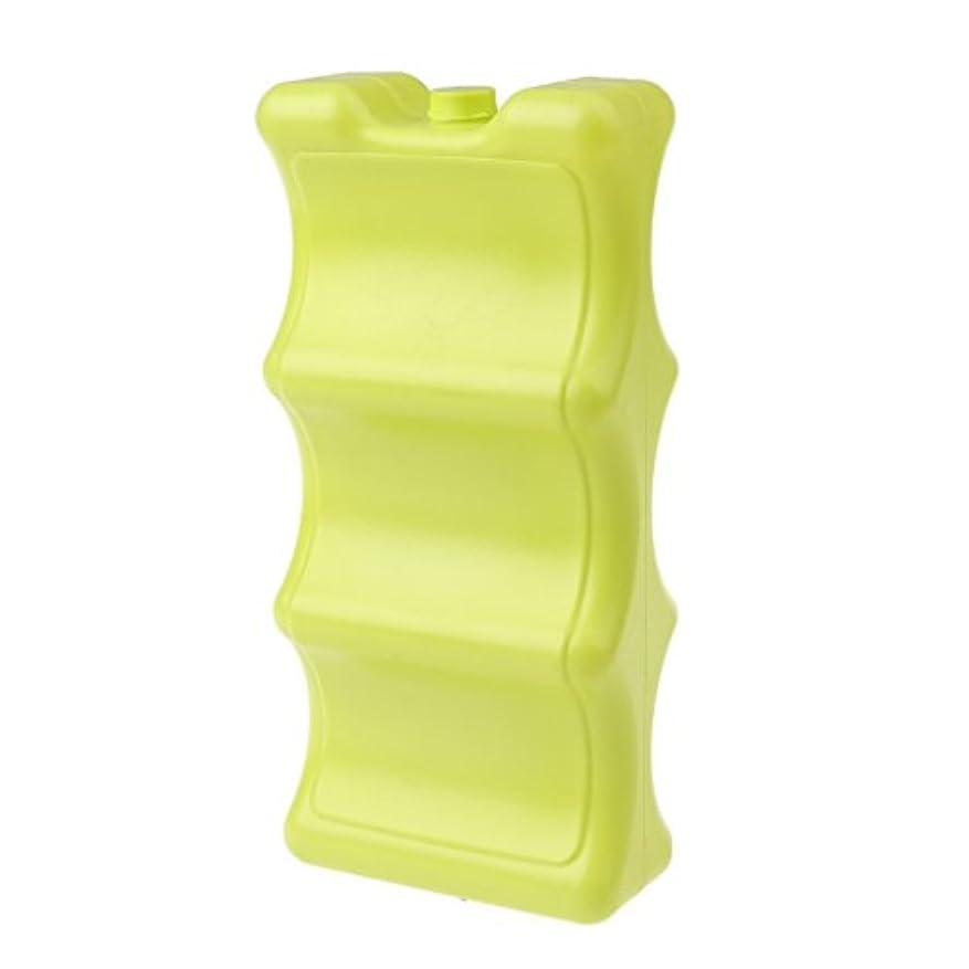 看板視力対人Baoblaze ポータブル ランチフリーザー アイスブロックケース クールパック クーラーボックス プラスチック 全2色
