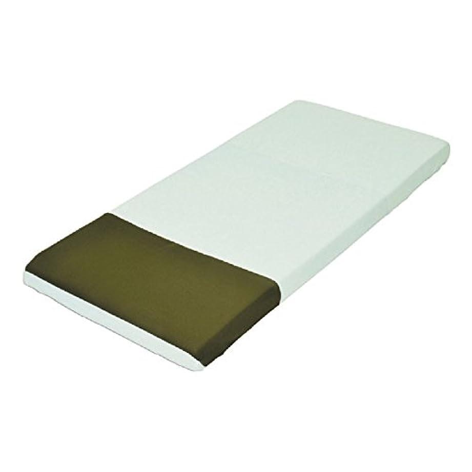 モルテン ハイパー除湿シーツ 吸水拡散 防水 ボックス全身 グリーン