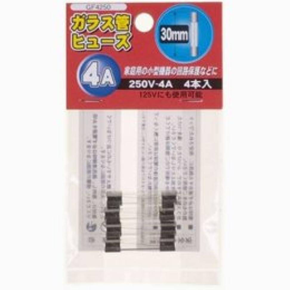 安定した篭言及する【まとめ 5セット】 YAZAWA ガラス管ヒュ-ズ30mm 250V GF4250