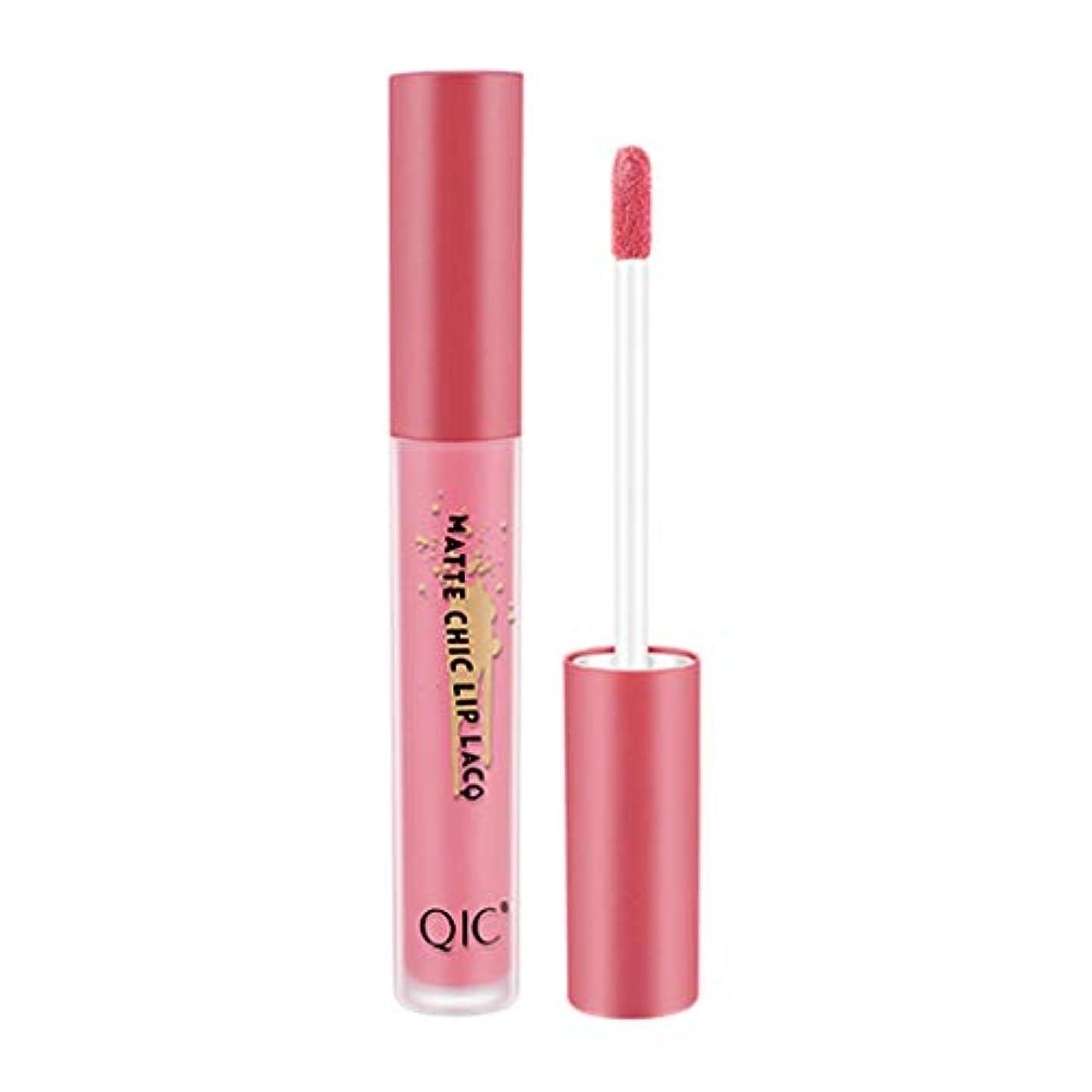 頂点品規制するQIC無光沢のセクシーな液体の唇の光沢の長続きがする防水は24時間を保ちます