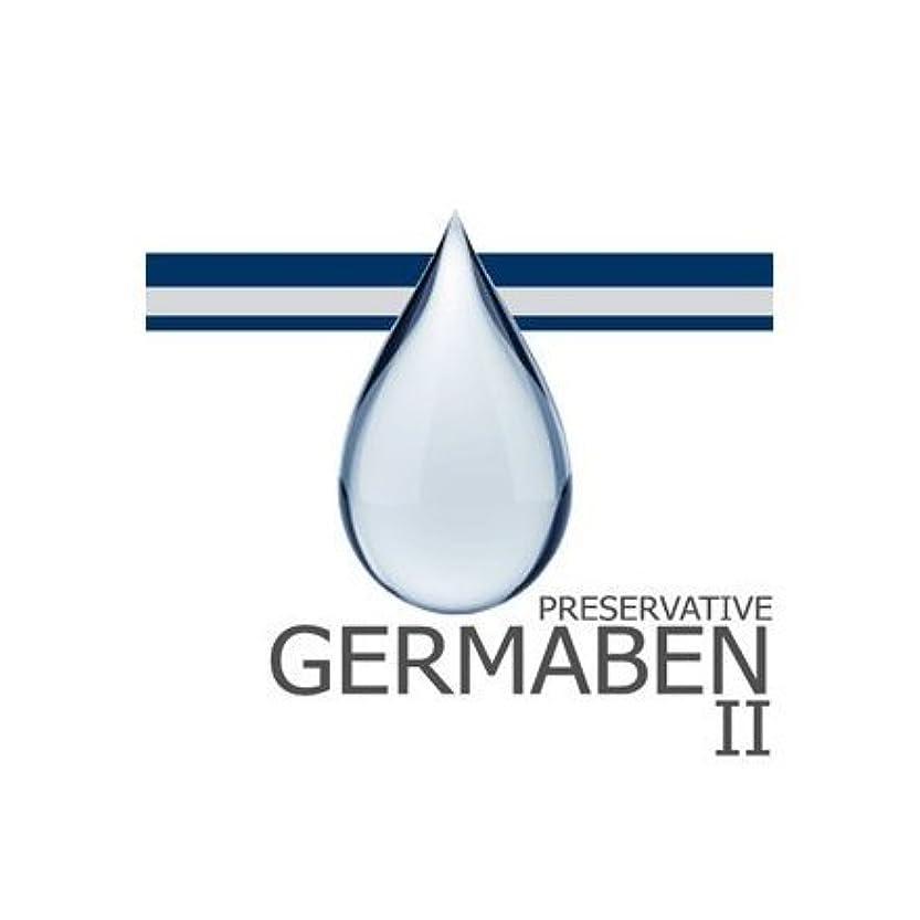 復活する識別家族germaben II