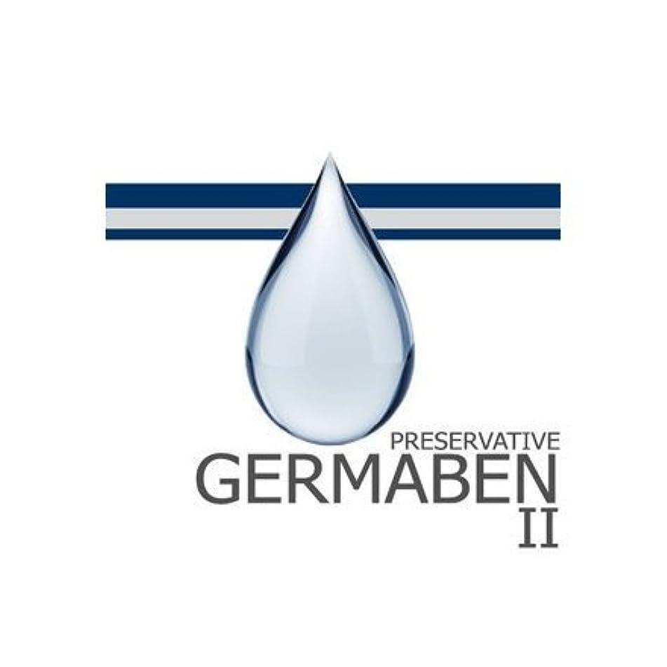 精神医学懐欠席germaben II