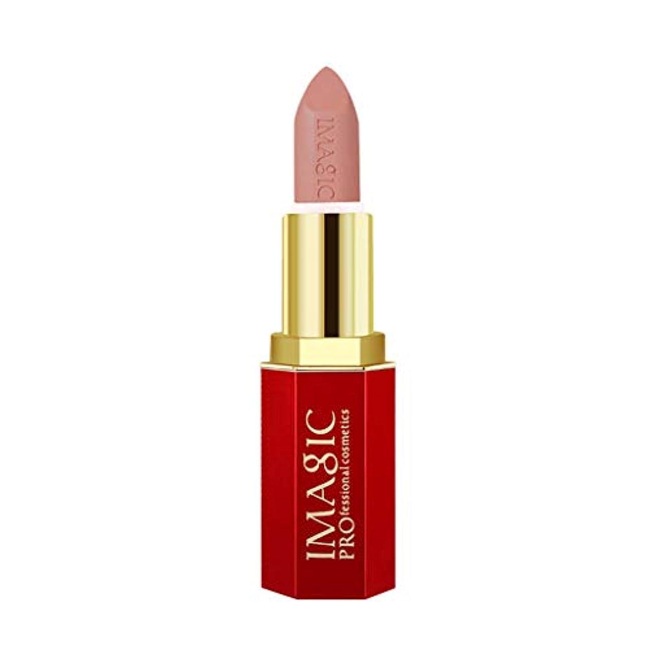 アリーナまたはどちらかスタウト黒い液体の口紅の保湿剤のビロードの金属の口紅の化粧品の美の構造