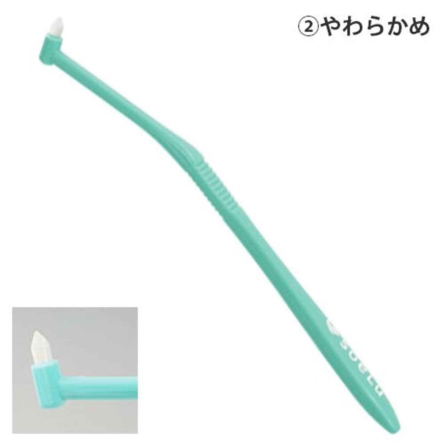 存在するおもしろい最初にソエル 歯ブラシ PLUSやわらかめ