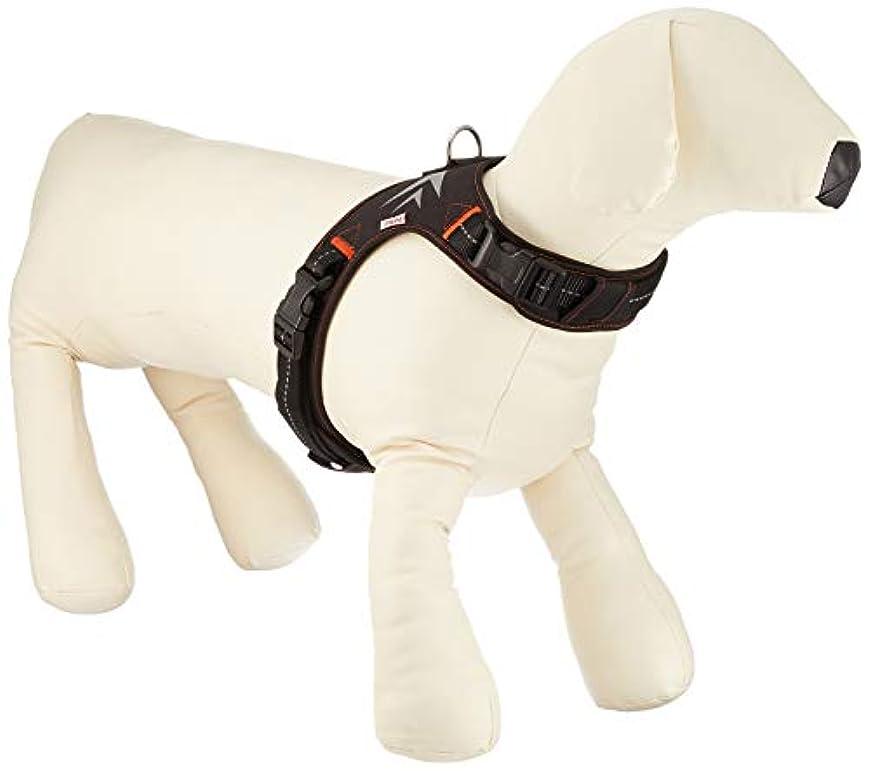 クリーク文明化合図ペティオ (Petio) ベーシックプラス ホールドハーネス ウェーブ ブラック 大型犬用 L サイズ