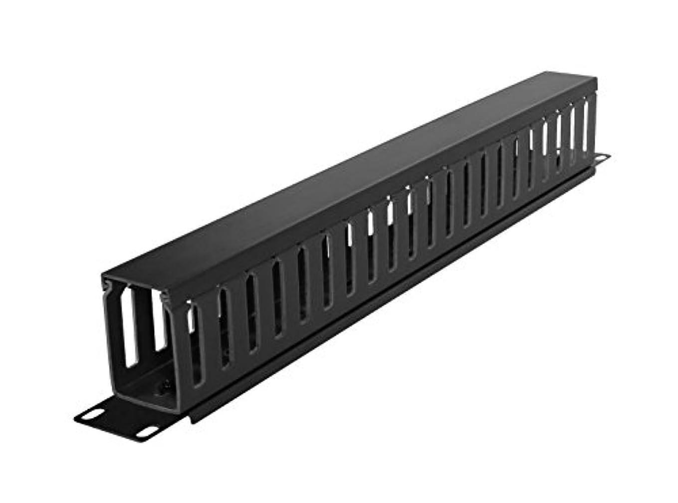 ボーナス行方不明長々とCyberPower Carbon CRA30003 - Rack cable management duct with cover - 1U - 19