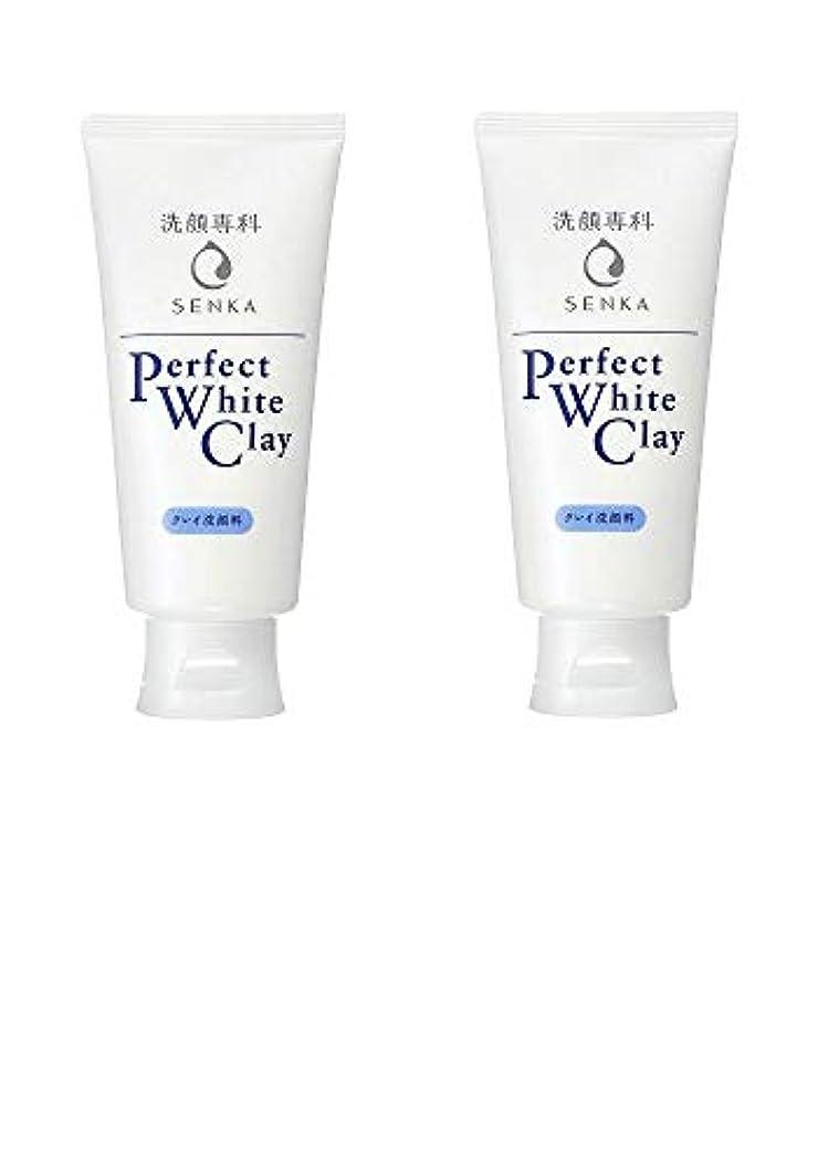 謎薬用注文【2個まとめ買い】専科 パーフェクトホワイトクレイ 洗顔料 120g