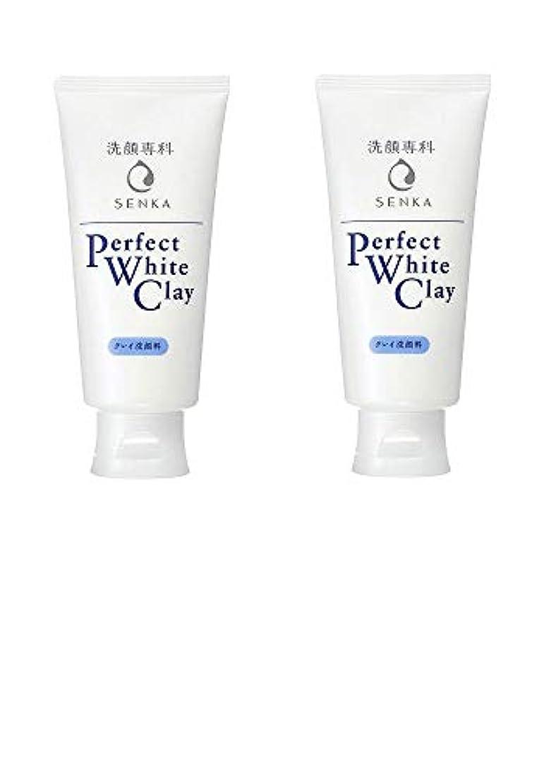 妥協拮抗浴【2個まとめ買い】専科 パーフェクトホワイトクレイ 洗顔料 120g