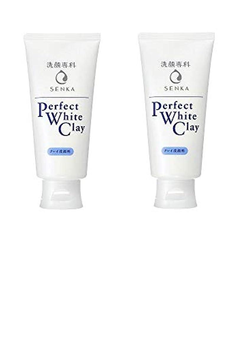 目の前の放射性もう一度【2個まとめ買い】専科 パーフェクトホワイトクレイ 洗顔料 120g
