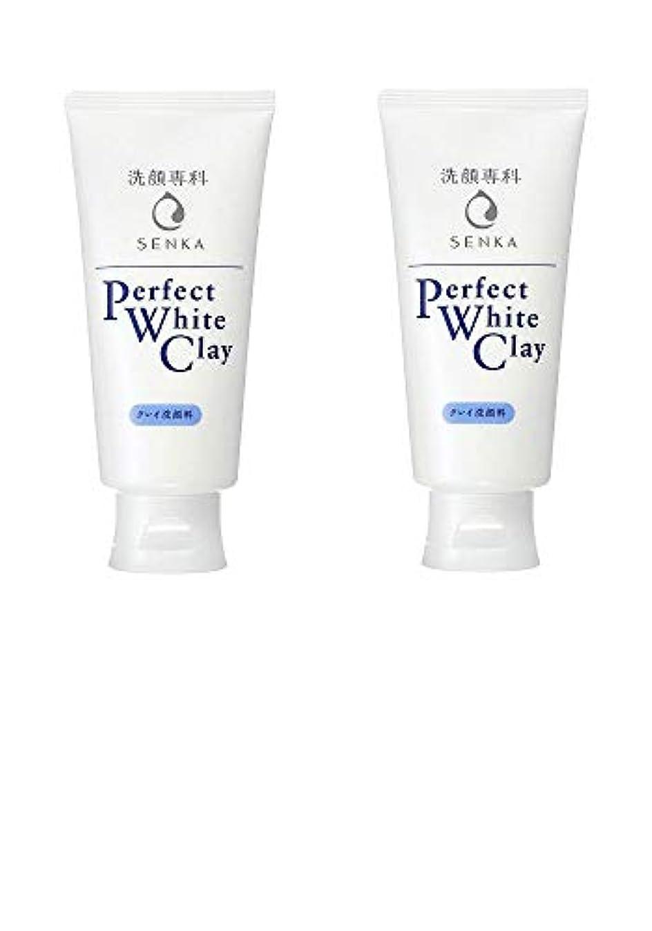 歯火山接地【2個まとめ買い】専科 パーフェクトホワイトクレイ 洗顔料 120g