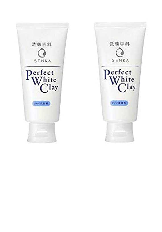 【2個まとめ買い】専科 パーフェクトホワイトクレイ 洗顔料 120g