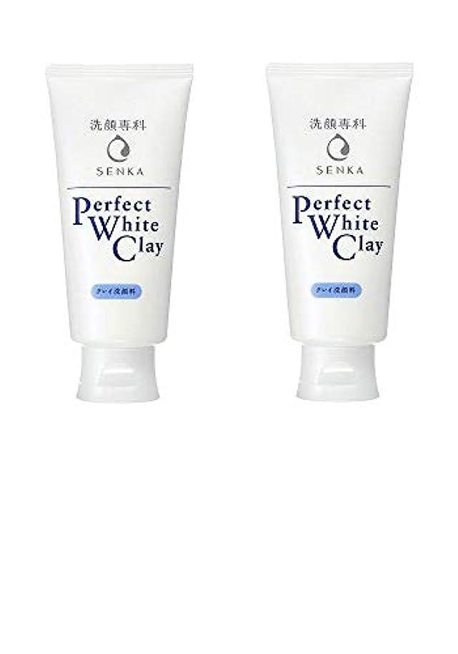 道摩擦報酬【2個まとめ買い】専科 パーフェクトホワイトクレイ 洗顔料 120g