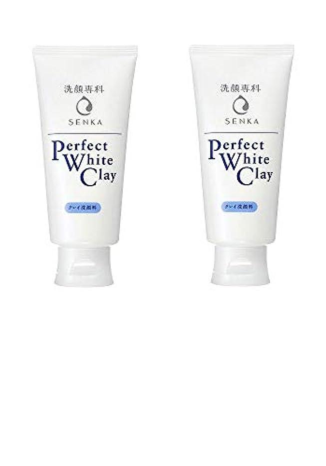 乱れ一瞬コーン【2個まとめ買い】専科 パーフェクトホワイトクレイ 洗顔料 120g
