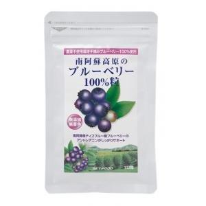 健康サプリメント 南阿蘇高原のブルーベリー100%粒 28g(112粒)