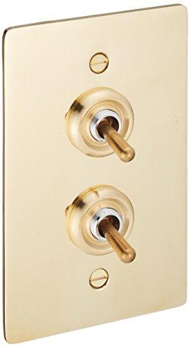 アクシス/Homestead+真鍮プレートスイッチ ダブル+トグルスイッチ+HS2336